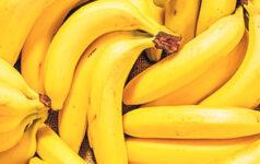 issue44_banana_teaser