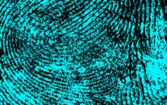 issue49_fingerprints_teaser