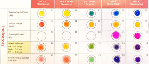 A microscale chemistry worksheet with droplets of colourful pH indicators