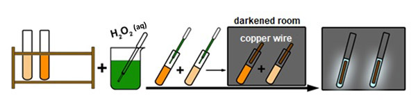 The final steps of activity 3 when the luminescence reaction is triggered