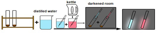The final steps of activity 2 when the luminescence reaction is triggered