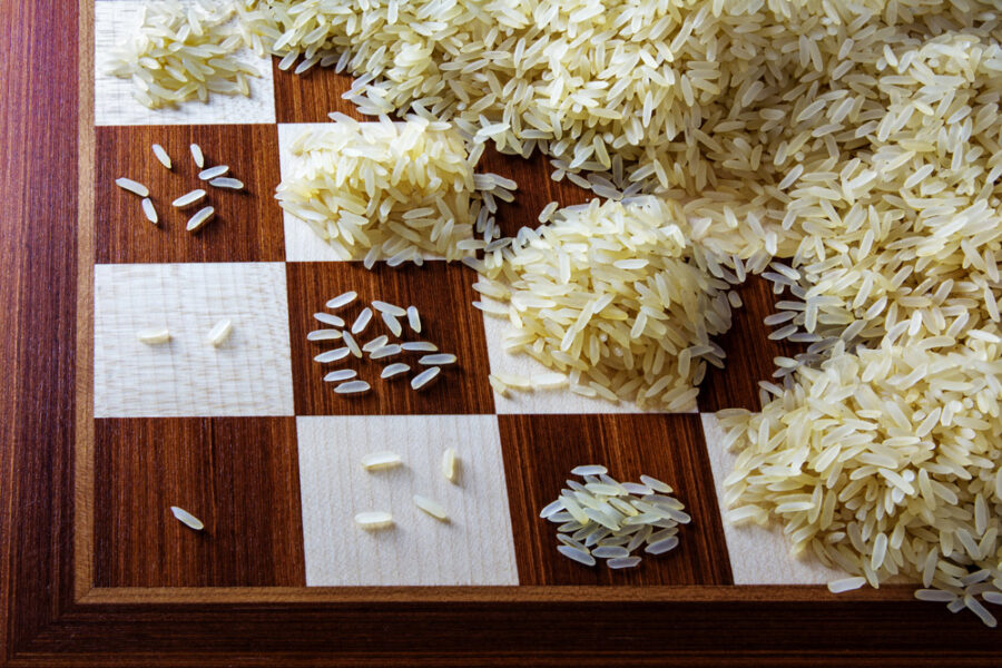 Rice grains on a chess board